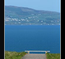 Bench with a View by Laura Cameron