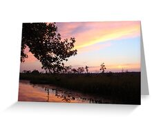 BANNERS OF LEMON LIGHT - SUNSET ON ECONFINA CREEK Greeting Card