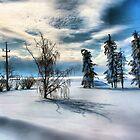 Winters Love by jonnikray