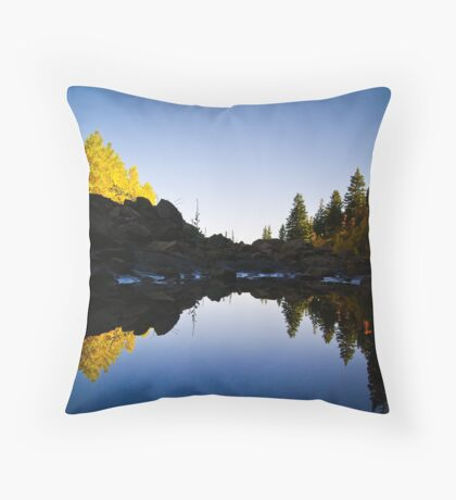 Natural Symmetry Throw Pillow