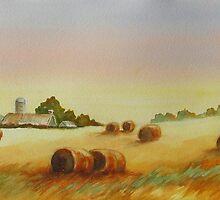 Hillside Bales by bevmorgan