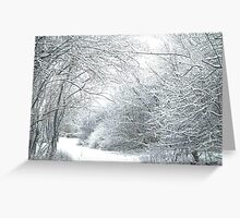 Cold but beautiful snow Greeting Card