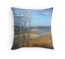 View from Mt. Washburn Throw Pillow