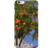 Pomegranate Tree iPhone Case/Skin