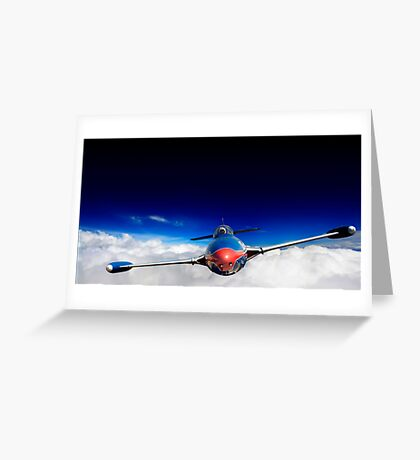 Warrior of the sky Greeting Card