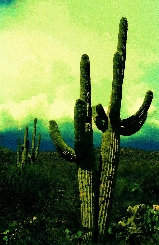 Saguaros by Harlan Mayor