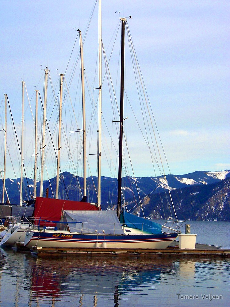 Bayview Sailboat Marina by Tamara Valjean