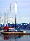 Bayview Sailboat Marina by Tamara Valjean