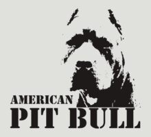 american pit bull by hottehue