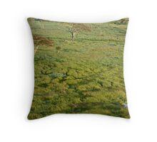 Serengeti Trails Throw Pillow