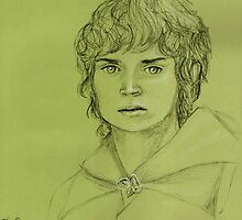 Frodo Baggins by Gemma Amendola