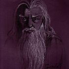 Gandolf the Gray by Gemma Amendola