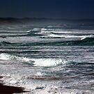 WILD SEA  by helmutk