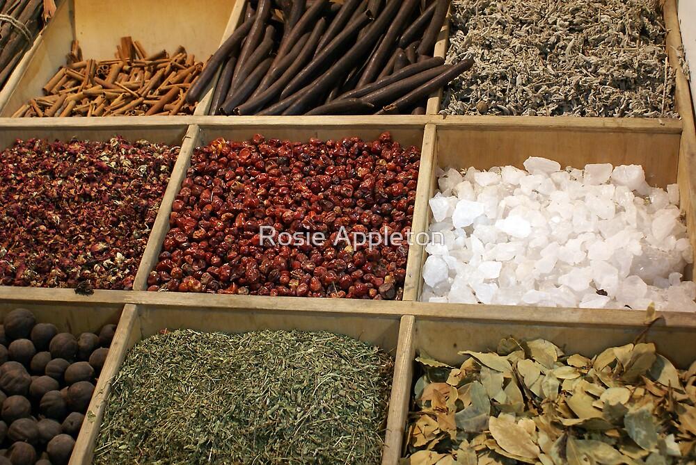 Spices by Rosie Appleton