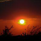 October Sunset by Glenna Walker