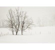 Open Snow Fields Photographic Print