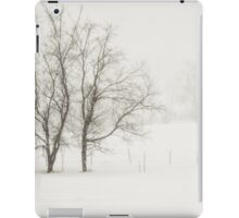 Open Snow Fields iPad Case/Skin