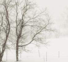 Open Snow Fields Sticker