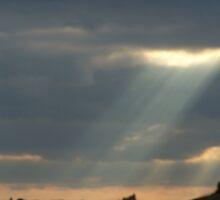 LET YOUR LIGHT SHINE by ELIZABETH B