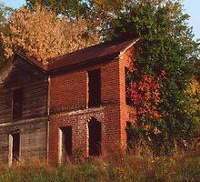 Derelict Farmhouse - Waynesburg by Steven Godfrey