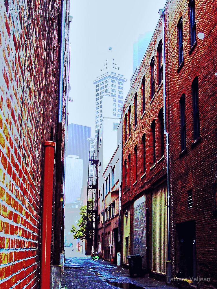 Seattle Alley by Tamara Valjean