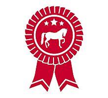 Horse dressage rosette ribbon Photographic Print