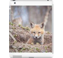 Kit Fox 2011-3 iPad Case/Skin
