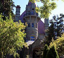 A Baron's Home by celesteodono