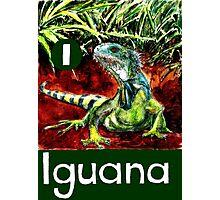 I is for Iguana Photographic Print
