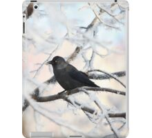 crow on snow-covered tree iPad Case/Skin