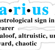 Zodiac Definitions: Aquarius Sticker