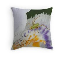 Cute little bug on an iris Throw Pillow