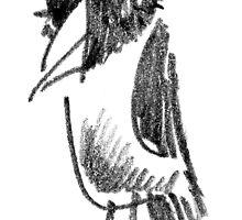 Wide-eyed Bird by BorisBurakov