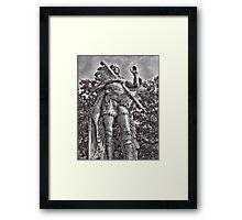 Chief Redbird Framed Print