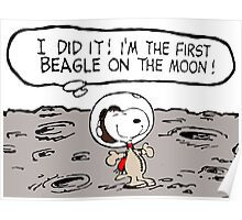 Snoopy on the Moon Poster