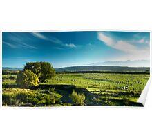 Panoramic view of rural scenery Poster