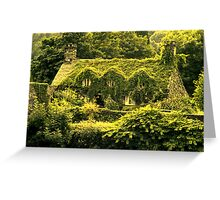 In the green (Llanrwst) Greeting Card