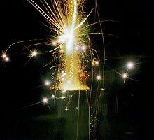 Backyard Fireworks by OceanBien
