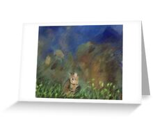 Cat and Sky Greeting Card