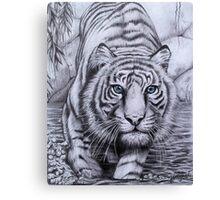 """Tiger blue"" Canvas Print"