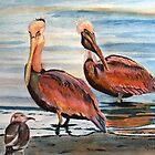 Pelican Party by Karen Ilari