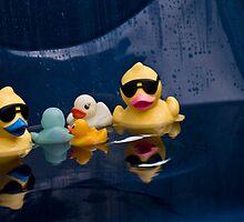 Ducks to water by Nala
