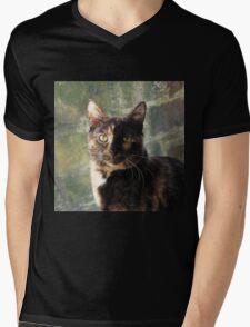 Tortoiseshell cat looking at camera Mens V-Neck T-Shirt