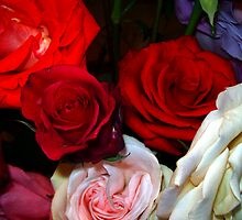 My Roses 4 by Mariam Muradian