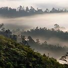 Misty Mountains by Steven  Siow