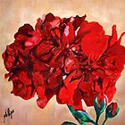 Geranium Bloom by Jim Phillips