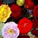 My Roses 9 by Mariam Muradian