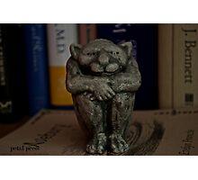 literary gargoyle Photographic Print
