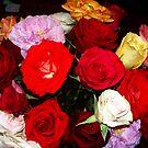 My Roses 11 by Mariam Muradian