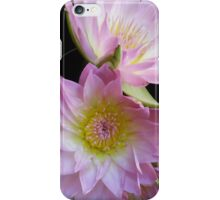 Two pink and green lotus blossums iPhone Case/Skin